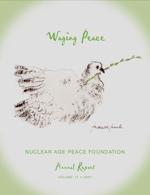 2007 NAPF Annual Report