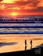 2011 NAPF Annual Report