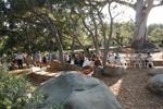 Sadako Peace Garden at La Casa de Maria