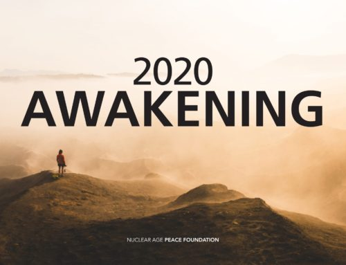 2020 Awakening: NAPF's 2019-20 Annual Report